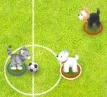 Hayvanlarla Futbol Oyunu