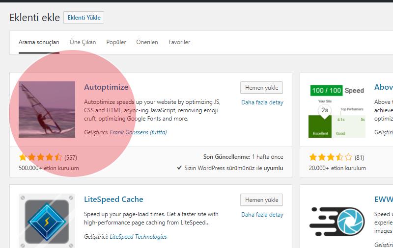 Autoptimize Plugin WordPress Optimize (Detaylı Anlatım) - St
