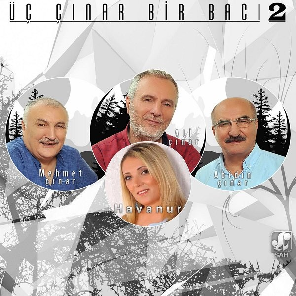 Üç Çınar Bir Bacı Vol2 2019 Full Albüm Flac İndir