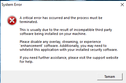 system error a critical error has occurred and the process