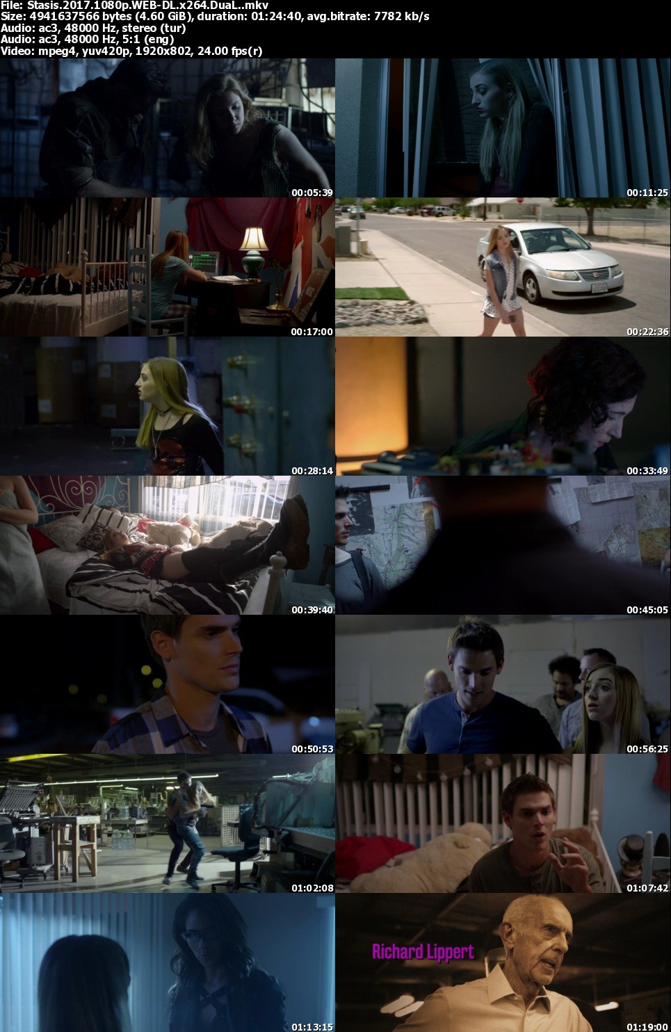Dolaşım - Stasis - 2017 - 1080p - DuaL (TR-EN)