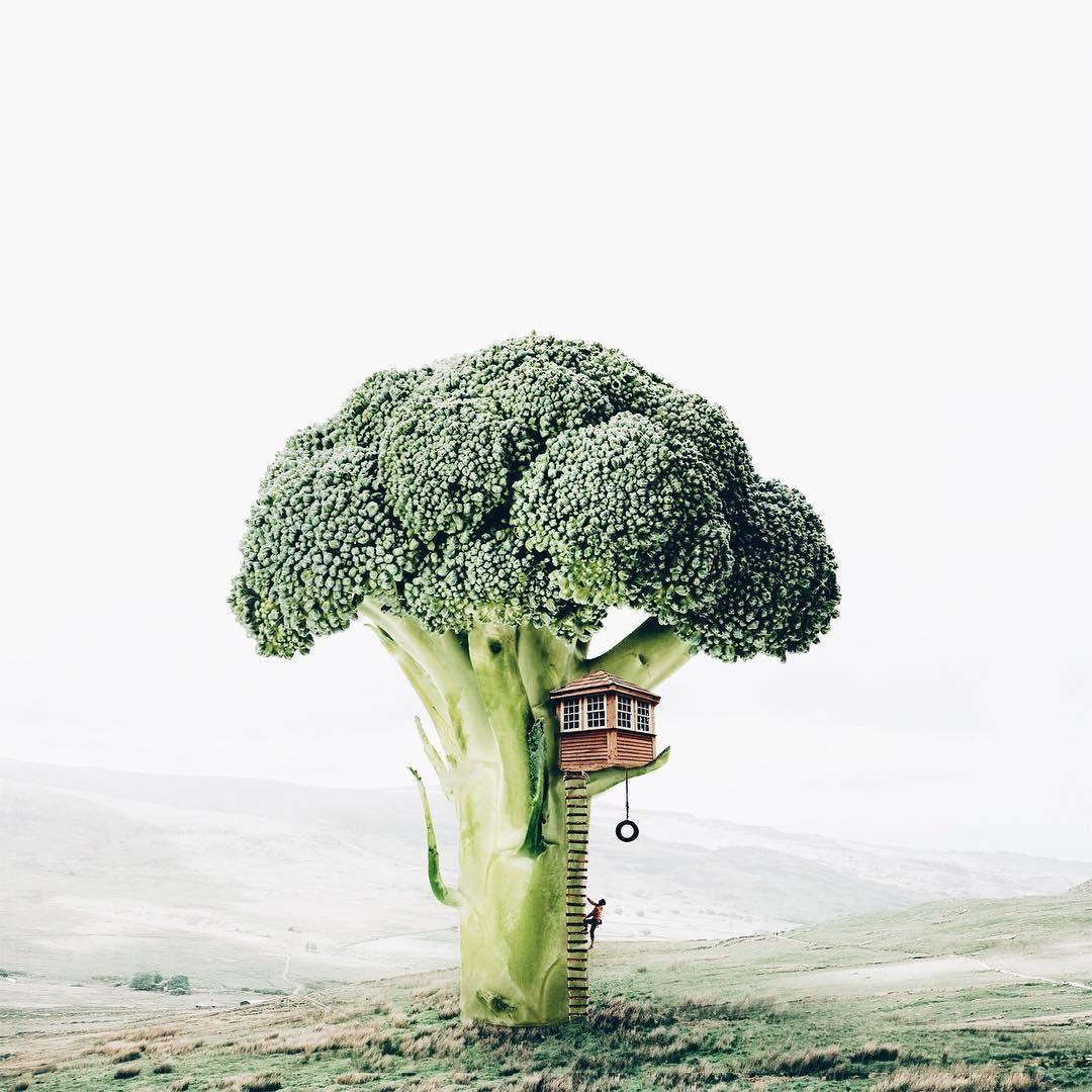 Luisa Avezedo'nun Umulmadık Nesneleri Birleştirerek Yaptığı Olağan Dışı Sanat 22. resim