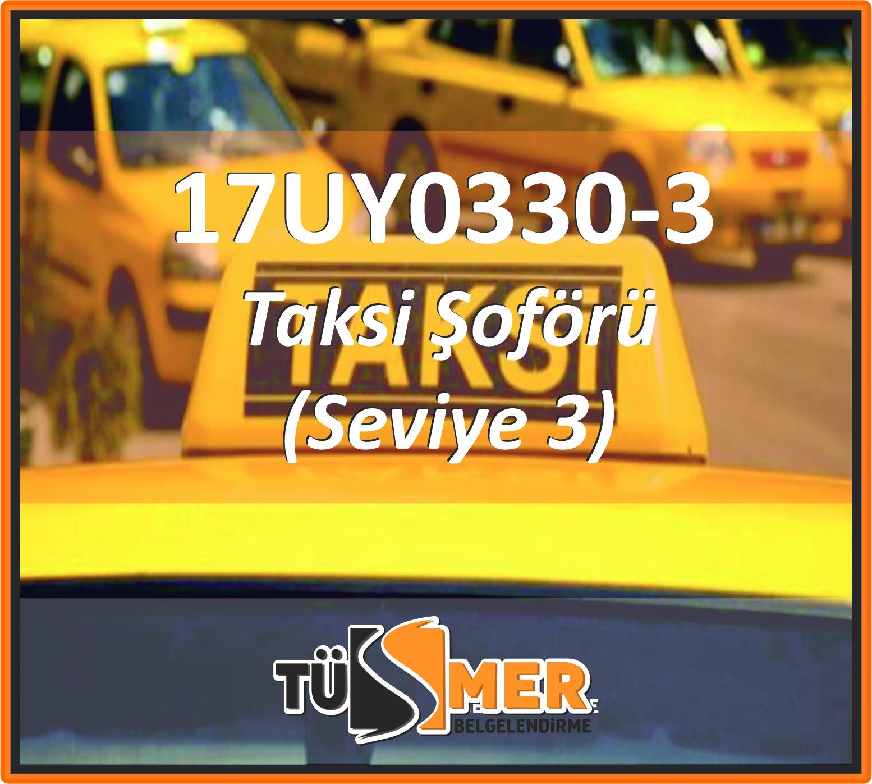 17UY0330-3 Taksi Şoförü (Seviye 3)