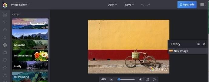 Web Fotoğraf Editörleri