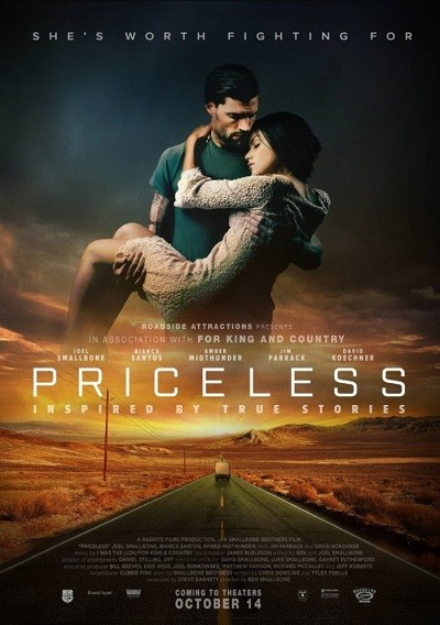 Priceless 2016 HDRip XviD AC3 – EVO – indir