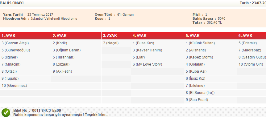 İSTANBUL ORTAK ALTILI - 1
