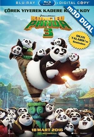 Kung Fu Panda 3 2016 m3D Mkv 3D H-SBS DUAL TR-EN - Tek Link indir