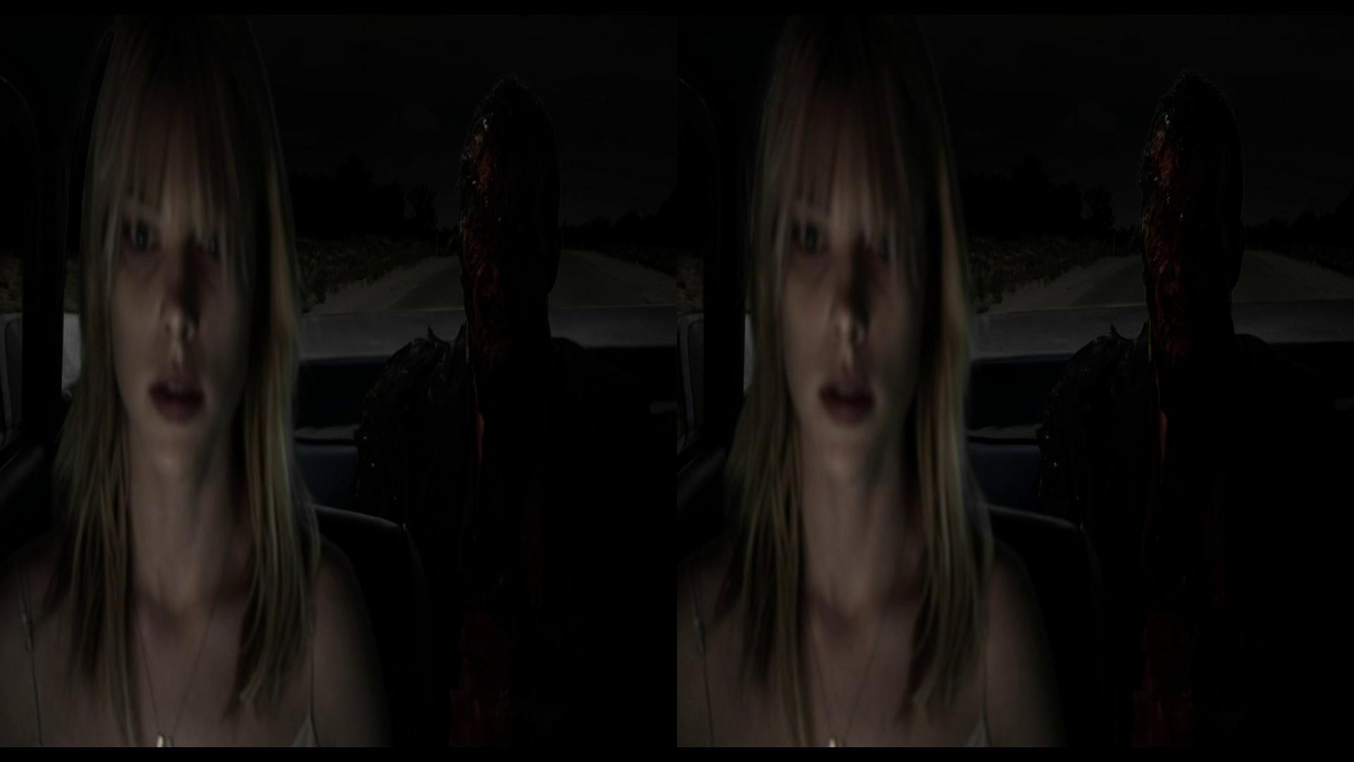 Karanlık Ülke - Dark Country 2009 3D (1080p BluRay H-SBS) DUAL TR-EN - 3D Fim indir