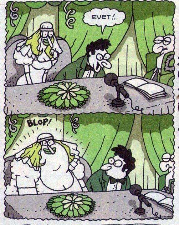 VDW54B - Karikatürler .. :)
