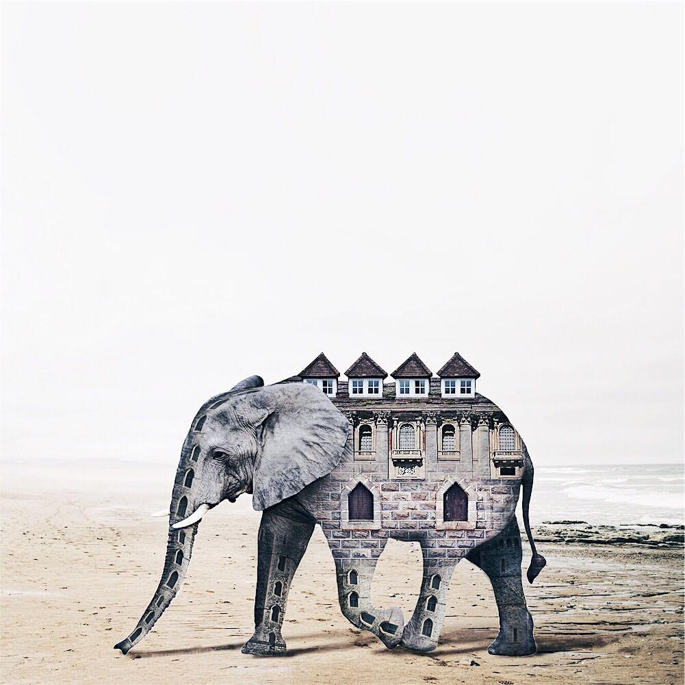 Luisa Avezedo'nun Umulmadık Nesneleri Birleştirerek Yaptığı Olağan Dışı Sanat 15. resim