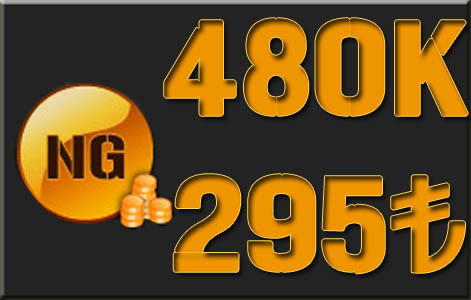 480K NG 295 TL