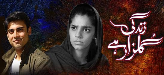 Zindagi Gulzar Hai / 2012 - 2013 / Pakistan