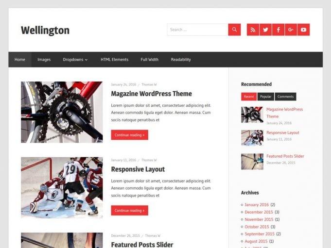 Wellington Blog Teması indir