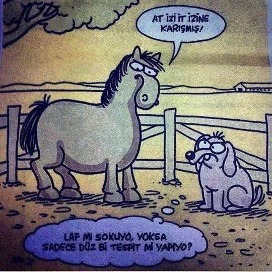 Wr4MEq - Karikat�rler .. :)
