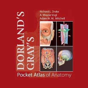 Pocket Atlas of Anatomy v8.0.249 [Premium] Apk Full İndir