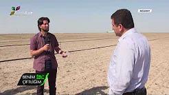 Pancar Yetiştiriciliğinde Toprak İşleme ve Hazırlıklar