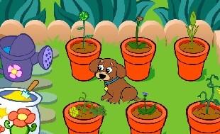 Bahçıvan Dora