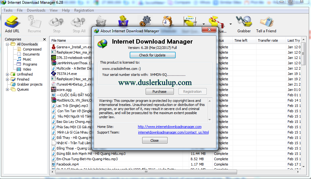 YD1kka İnternet Download Manager 6.28 Video Programını Full İndir
