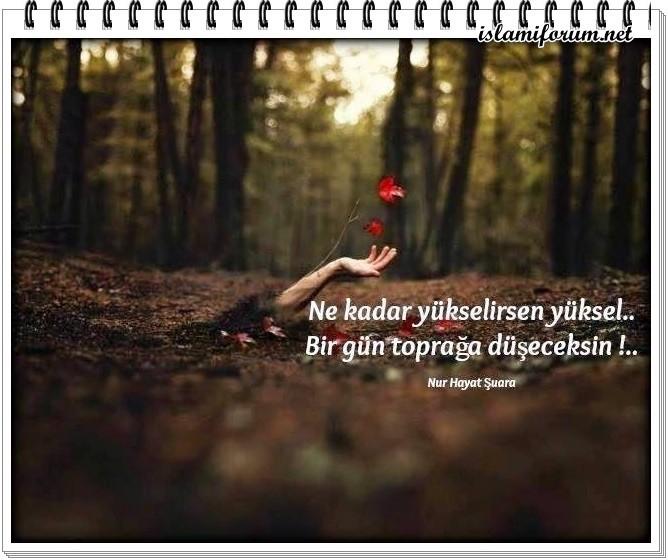 [Resim: YOqM0z.jpg]