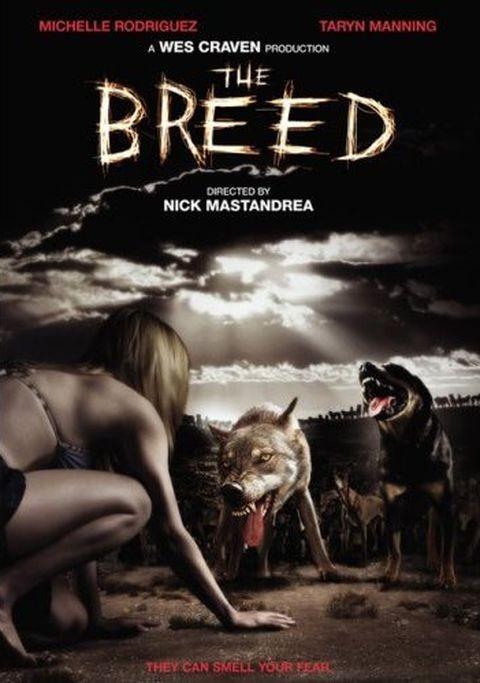 The Breed - Vahşi Irk (2006) - türkçe dublaj film indir