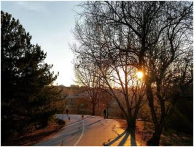 odtü kampüs yolları