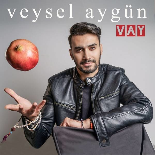 Veysel Aygün Vay 2019 Single Flac Full Albüm İndir