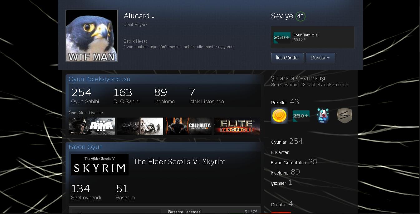 254 Oyun ve 163 DLCli Steam Hesabı