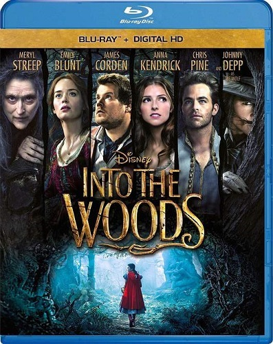 Into the Woods (2014)   1080p BluRay   Mkv