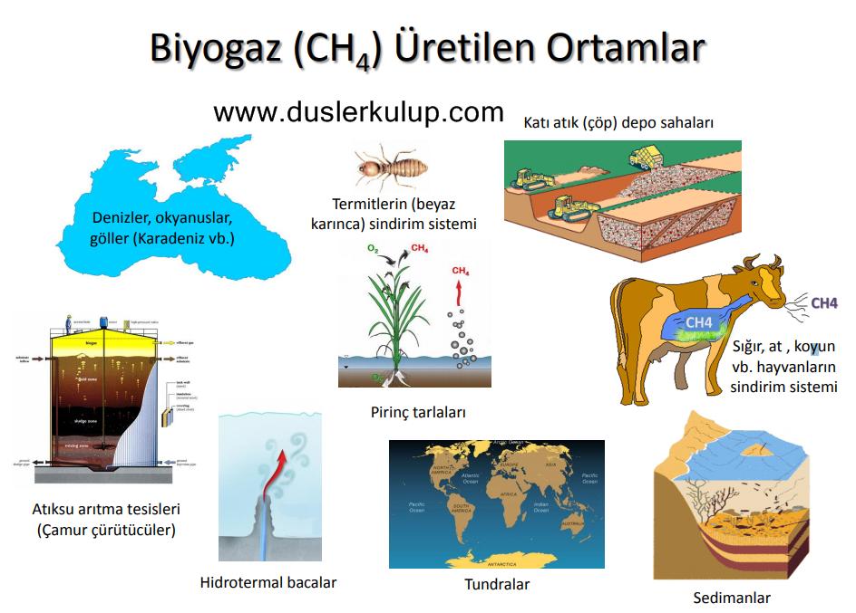 Organik Atıklardan Biyogaz Üretim Süreci Nasıldır?
