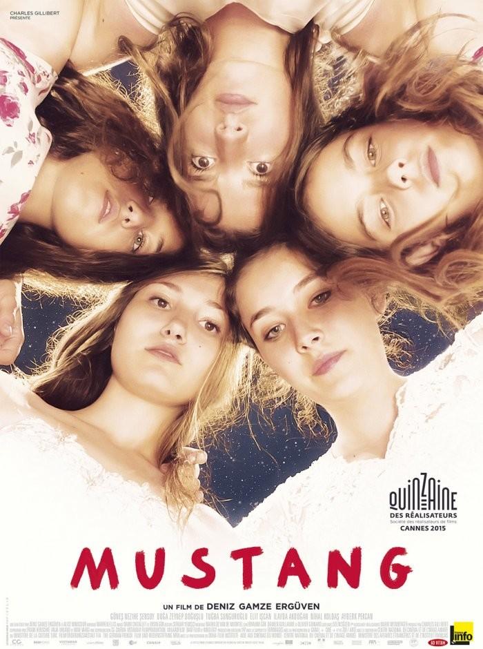 Mustang (2015) - bluray yerli film indir