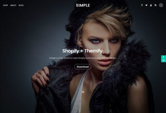 Simple Theme by Themify wordpress teması