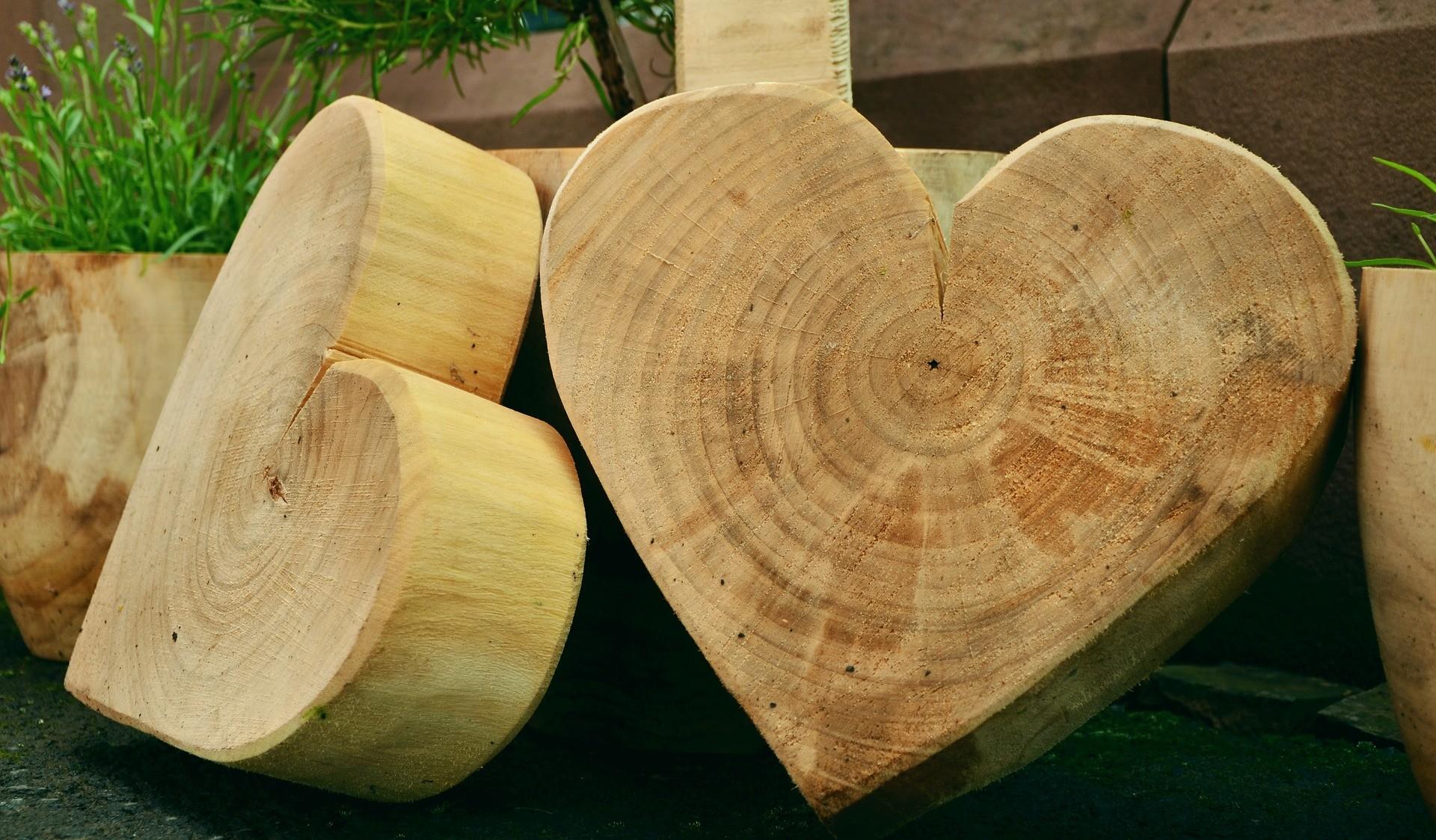 Как да направим изкуство от дърво?
