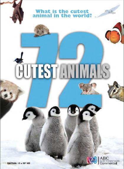 72 Sevimli Hayvan – 72 Cutest Animals Tüm Bölümler 1080p Türkçe Dublaj indir