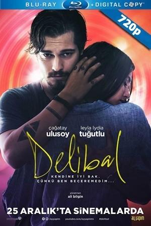 Delibal 2015 720p DVDRip Upscale DD5.1 AC3 Yerli Film - Tek Link indir