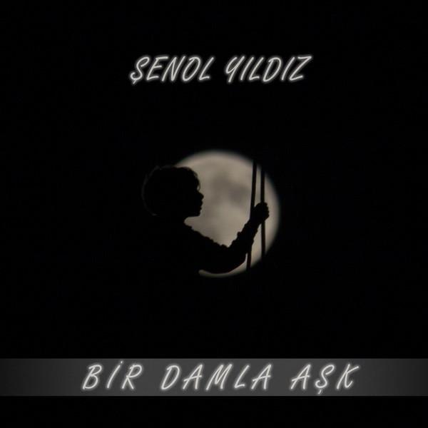 Şenol Yıldız Bir Damla Aşk 2019 Albüm Flac full indir