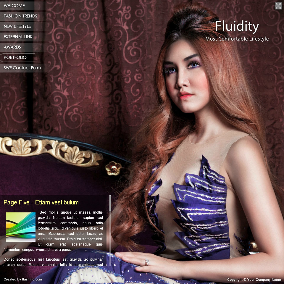 Free Fluidity Flash Template