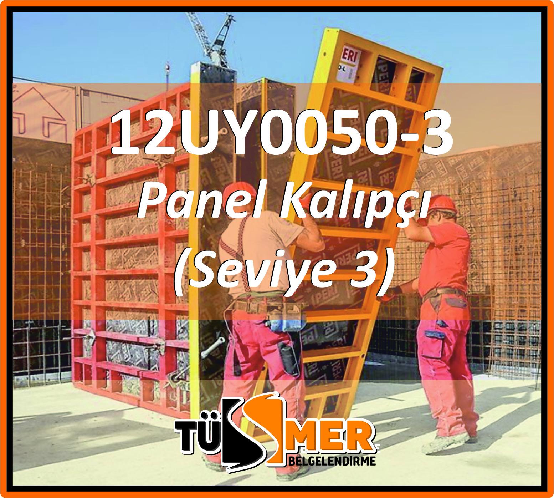 12UY0050-3 Panel Kalıpçı (Seviye 3)