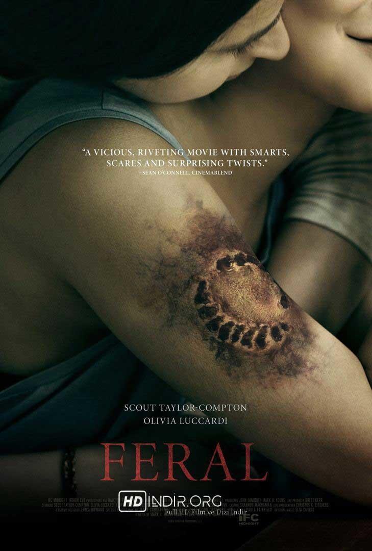 Feral indir (2017) Türkçe Dublaj 720p Full HD Tek Link