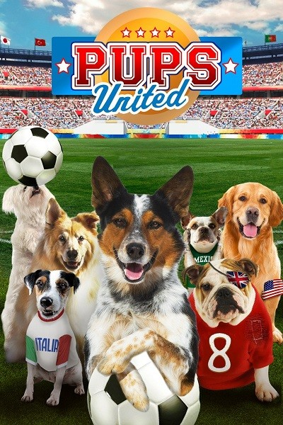 Pati Takımı – Pups United 2015 (Türkçe Dublaj) DVDRip x264 – indir