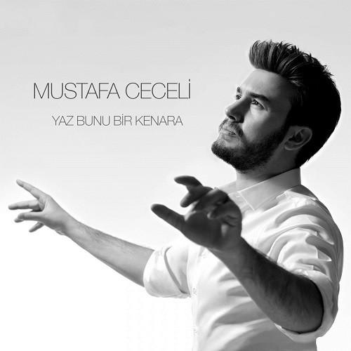 Mustafa Ceceli - Yaz Bunu Bir Kenara (2019) İndir Sözleri