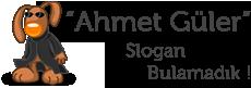 Ahmet Güler  - Facebook Hileleri, Minecraft İndir, Fifa 2014 İndir