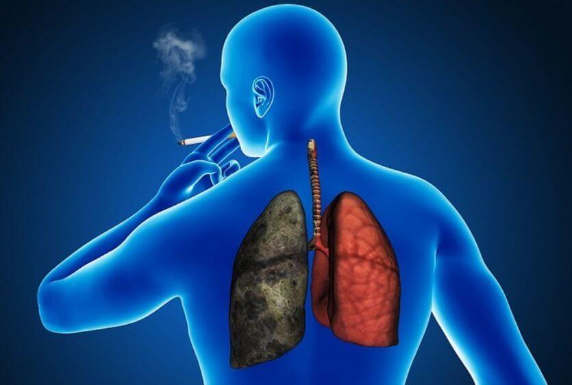 sigarayı bırakan vücud