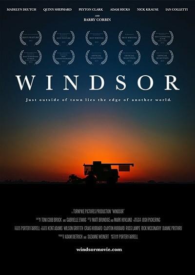 Windsor 2017 WEBRip x264 Türkçe Dublaj indir