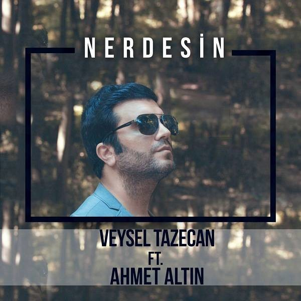 Veysel Tazecan Nerdesin 2019 Single Flac Full Albüm İndir