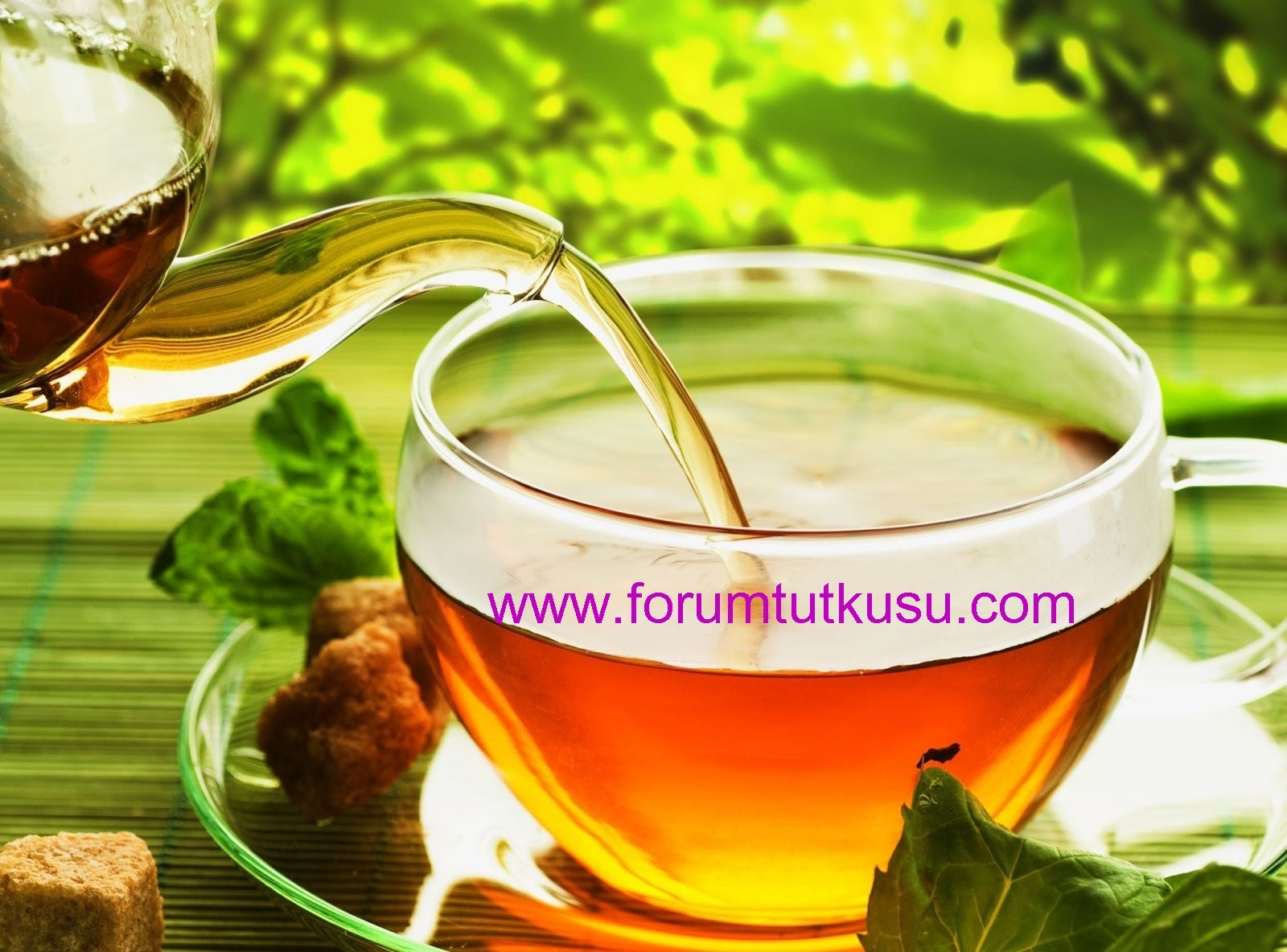 Adet Söktürücü Bitkiler ve Çaylar
