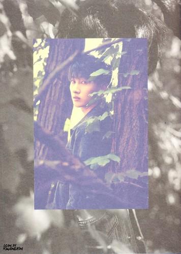 Super Junior - Play Album Photoshoot - Sayfa 6 GrnyD5