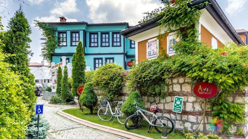 Walk around the historical houses in Odunpazari