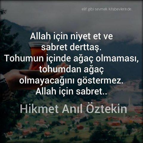 Hikmet Anıl Öztekin sözləri-yazılı şəkillər...