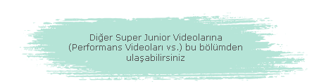 Other Super Junior Videos (Diğer Super Junior Videoları)