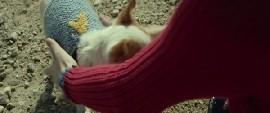 Lütfen Beklemede Kal Filmini Tr Dublaj indir Ekran Görüntüsü 2